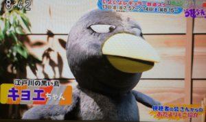 チコちゃん(NHK)の声優は木村祐一!顔はCG中身はミッキー